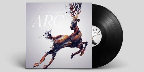 Arc Vinyl Sleeve